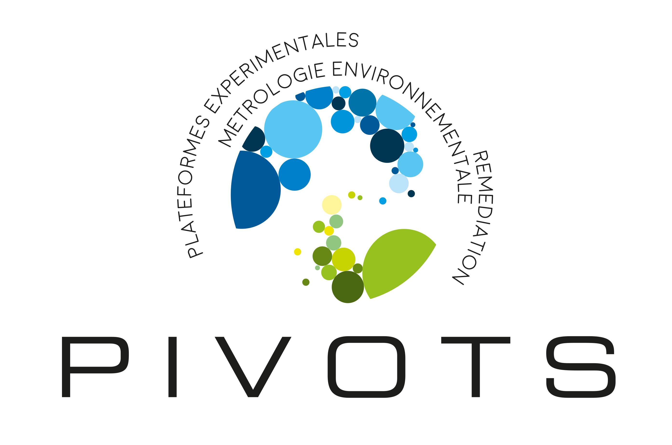 logo-pivots